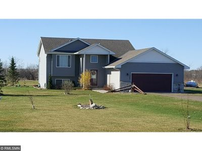 Princeton MN Single Family Home Sold: $219,000