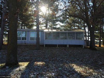 Pine City Single Family Home For Sale: 11617 Snake River Drive