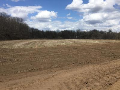 Residential Lots & Land For Sale: Xxxx 193rd Lane