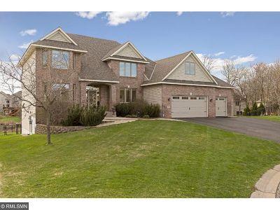 Blaine Single Family Home For Sale: 13128 Taconite Court NE