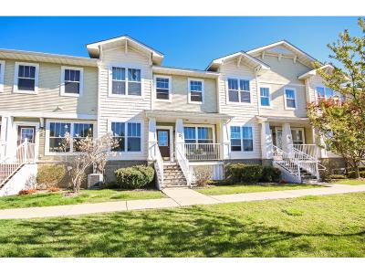 Condo/Townhouse Sold: 1240 County Road D E #16