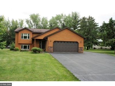 Pine City Single Family Home For Sale: 10241 Park Circle