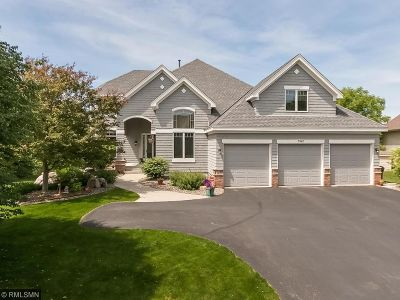 Eagan Single Family Home For Sale: 3967 Donegal Way