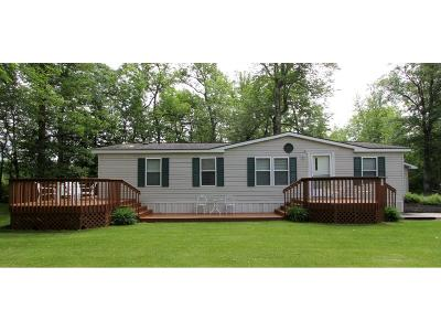 Emily Single Family Home For Sale: 21997 County Road 1