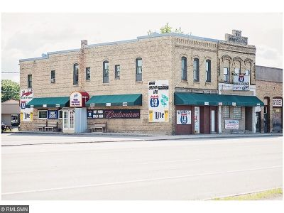 Commercial For Sale: 12 Hwy 10 N