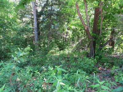Clear Lake MN Residential Lots & Land For Sale: $17,500