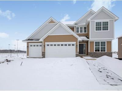 Blaine Single Family Home For Sale: 3064 131 Court NE