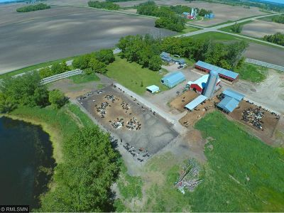 Kandiyohi County Farm For Sale: 8747 County Road 5 NW