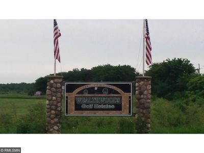 Aitkin Residential Lots & Land For Sale: Xxx 246th Street