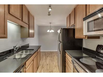 Minneapolis MN Condo/Townhouse For Sale: $152,400