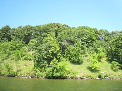Nisswa Residential Lots & Land For Sale: Xxx Dutchman's Bluff