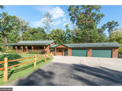 Lake Shore Single Family Home For Sale: 7336 Niemi Circle