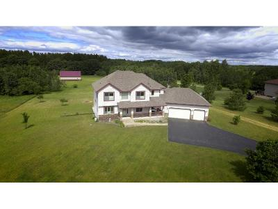 Sherburne County Single Family Home For Sale: 30940 98th Street NW