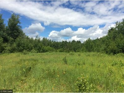 Hinckley Residential Lots & Land For Sale: 45785 Government Road