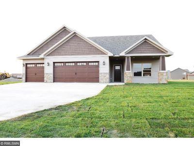 Saint Joseph Single Family Home For Sale: 521 7th Avenue SE
