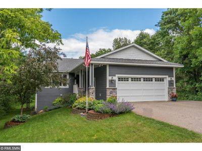 Brainerd Single Family Home For Sale: 19461 Love Lake Road
