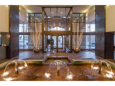 Minneapolis Condo/Townhouse For Sale: 401 S 1st Street #822