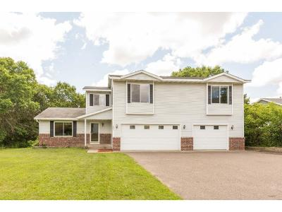 North Branch Single Family Home For Sale: 6461 Crestview Drive