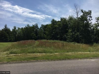 Residential Lots & Land For Sale: 21407 Naples Street NW
