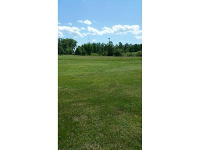 Coon Rapids Residential Lots & Land For Sale: 11670 Eagle Street NW