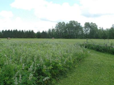 Residential Lots & Land Sold: Xxx Skunk Lake Rd