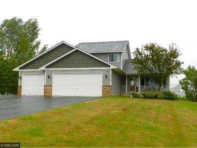 Single Family Home For Sale: 26165 Novak Avenue