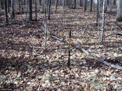 McGregor Residential Lots & Land For Sale: Tbd 6th Addn 183rd Avenue