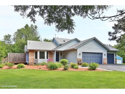 East Bethel Single Family Home For Sale: 805 225th Avenue NE