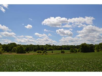 Minnetrista Residential Lots & Land For Sale: 7300 Halstead Drive