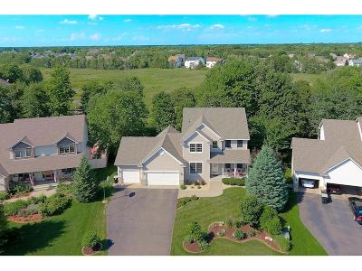 Andover Single Family Home For Sale: 1467 155th Lane NW