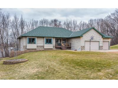 Carver County Single Family Home For Sale: 10520 County Road 24