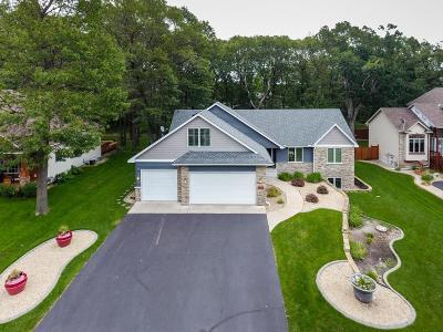 Blaine Single Family Home For Sale: 10923 Dunkirk Street NE