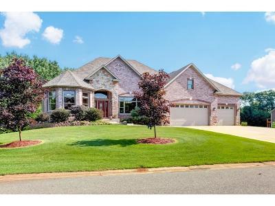 Ham Lake Single Family Home For Sale: 4148 159th Avenue NE