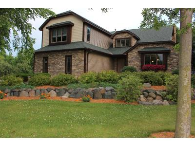 Forest Lake Single Family Home For Sale: 23950 Heath Avenue N