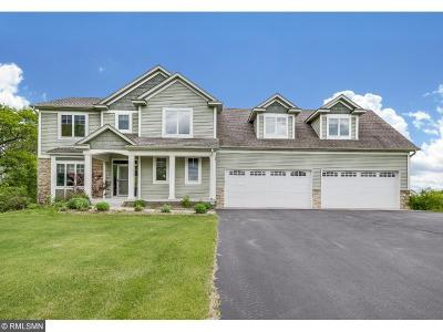 North Branch Single Family Home For Sale: 4527 397th Street