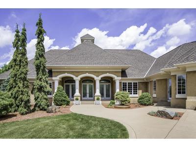 Scott County Single Family Home For Sale: 9130 195th Street E