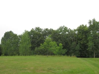 Residential Lots & Land For Sale: 20366 151st Street NW