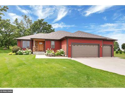 Single Family Home For Sale: 1521 Killdeer Avenue