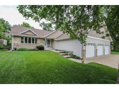 New Brighton Single Family Home For Sale: 1231 Long Lake Road