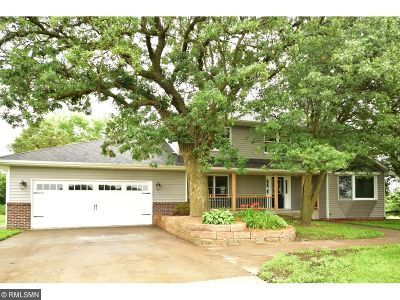 Andover Single Family Home For Sale: 14135 Vale Street NW