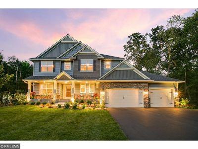Ham Lake Single Family Home For Sale: 14541 Dunkirk Street NE