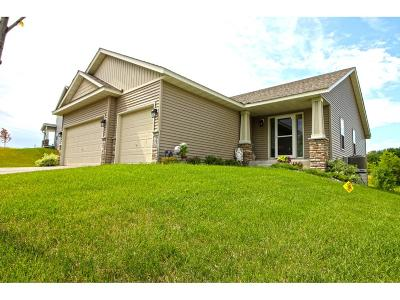 Watertown MN Single Family Home For Sale: $345,000