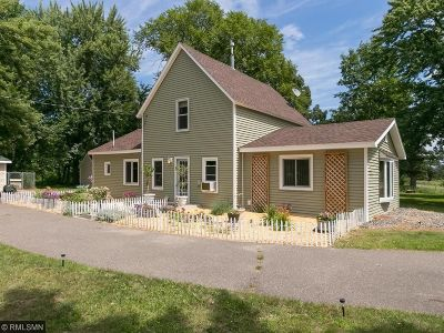 Saint Francis Single Family Home For Sale: 231 229th Avenue NW