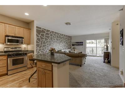 Hennepin County Condo/Townhouse For Sale: 3000 Raleigh Avenue #206