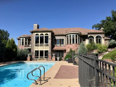 Lakeville Single Family Home For Sale: 18711 Legends Club Circle