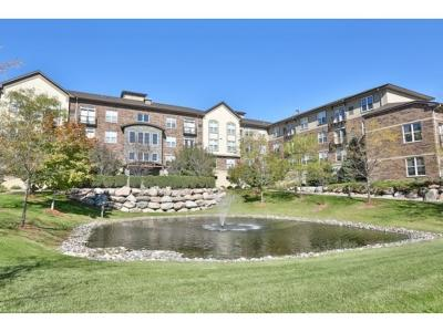 Eden Prairie Condo/Townhouse For Sale: 13560 Technology Drive #1230