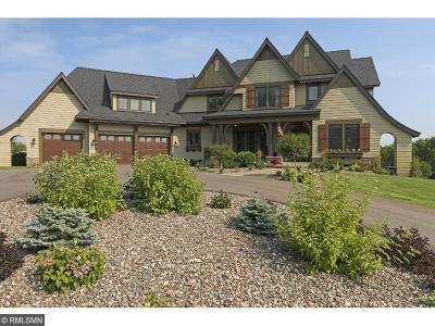 Hennepin County Single Family Home For Sale: 2172 Homestead Trail