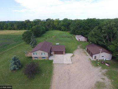 Northfield Single Family Home For Sale: 6750 Askov Avenue