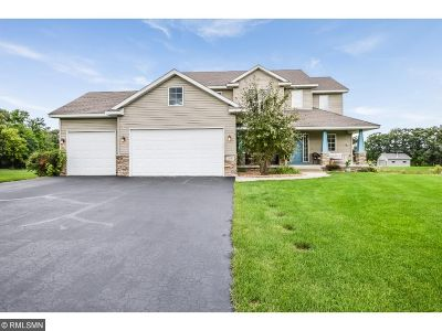 Ham Lake Single Family Home For Sale: 2847 180th Avenue NE
