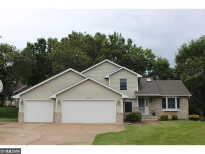 Lindstrom Single Family Home For Sale: 13500 295th Street